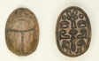 Scarab: Hathor Sistrum with Hieroglyphs (xaw-signs, hAt-signs, child signs, papyrus stalk)