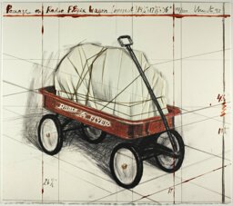 Package on Radio Flyer Wagon, Project