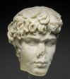 Fragment of a Portrait Head of Antinous