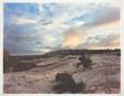 Daybreak on the Grand Gulch Plateau, Utah