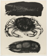 Crab and Crayfish, from A Bestiary