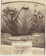 Versailles, Vase