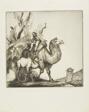 Peking Camels