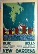 Blue Bells Kew Gardens