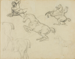 Sketches: Reclining Nude, a Horseman and Various Horses