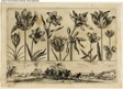 Flowers and Battle Scene, from Livre Nouveau de Fleurs Tres-Util