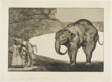 Animal Folly, from Disparates