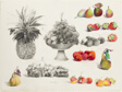 Still Life with Pineapple, Grapes, Pears, Crabapples, and Strawberries