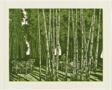 In the Bamboo Grove (Zhulin shenchu)