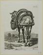 Feeding Mule - Rear, from Die Zweite Thierfolge