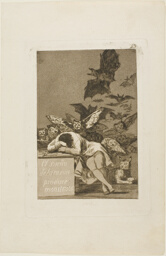 The Sleep of Reason Produces Monsters, plate 43 from Los Caprichos