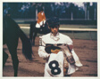 Racehorse: Weighing Out