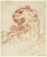 Study of the Head of a Lion
