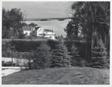 Neg #11: Home Through the Trees, Oak Brook, Illinois