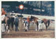 Racehorse: Unsaddling