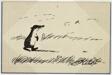 Untitled (Mole Walking)