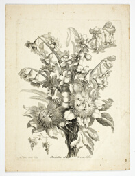 Hyacinthe and Passion Fruit Flower, plate two from Mes Petits Bouquets