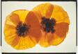 Poppies, Red & Orange #5