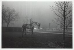 Chicago, D.B. Horse