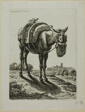 Feeding Mule - Front, from Die Zweite Thierfolge