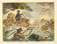 Bruin in his Boat