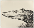 Crocodile, from A Bestiary