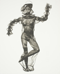 Young Woman in a Net (Miyake Design), New York