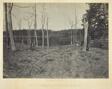 Battle Ground of Resacca, GA, No. 1