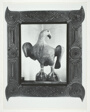 """Wooden Eagle Formerly Over the Gate of Old Fort Winnebago, Wisconsin, Carved by One of the Soldiers. """"Tramp-Art"""" Frame Painted Gold."""