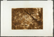 Aesacus and Hesperie, plate 66 from Liber Studiorum