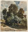 Grove of Trees (recto), Sketch of Aderley Church (verso)
