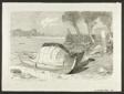 Shored Boats