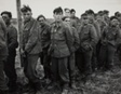 D Day, German Prisoners, Omaha, Normandy Beachhead