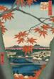 "Maple Trees at Mama, Tekona Shrine and Tsugi Bridge (Mama no momiji, Tekona no yashiro, Tsugihashi), from the series ""One Hundred Famous Views of Edo (Meisho Edo hyakkei)"""