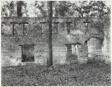 Ruin of Tabby (Shell) Construction, St. Mary's, Georgia