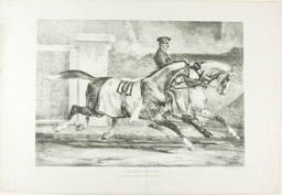 Horses Exercising, plate 6 from Various Subjects Drawn from Life on Stone