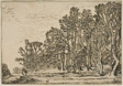 Landscape with Plank-Hedges and Man Bearing Wood