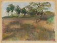 Ploughed Field Bordered by Trees