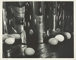 Eggs Reflected and Multiplied