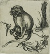 A Chained Monkey
