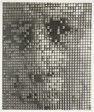 1001 Faces
