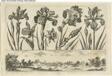 Flowers and Hunting Scene, from Livre Nouveau de Fleurs Tres-Util