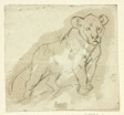 Five Sketches of Lions: Standing Cub