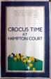 Crocus Time at Hampton Court